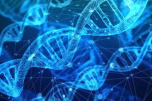 De Microsoft à Dr Microsoft Santé healthtech gafa Intelligence Artificielle