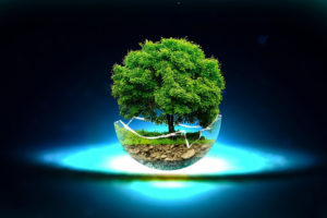 Des enzymes vont vaincre le plastique GreenTech Futur Innovation